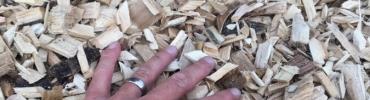 Les copeaux de bois